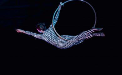 Cabaret of Circus Spectacle